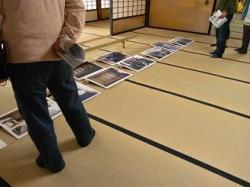 椿三十郎の写真パネル