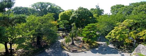 20080914_kaikoen-22.jpg