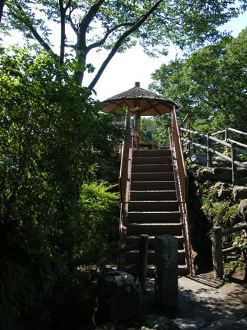 20080914_kaikoen-29.jpg