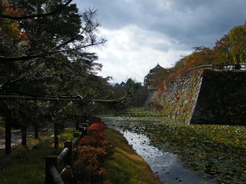 20081102_hirosaki_castle-20.jpg