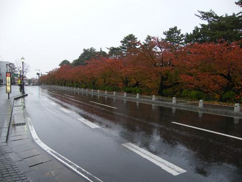 20081102_hirosaki_city-01.jpg