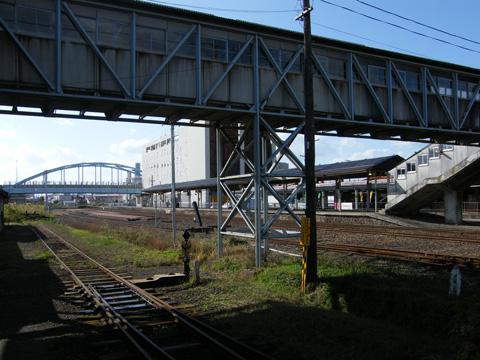 20081103_goshogawara-09.jpg