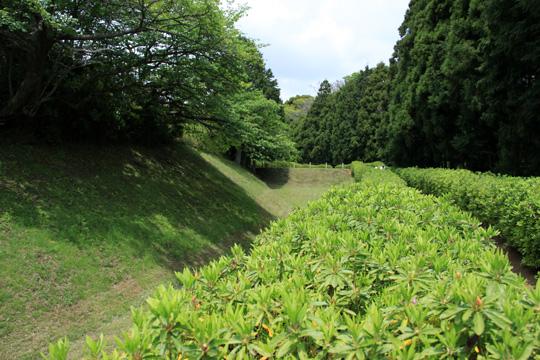 20090504_yamanaka_castle-09.jpg