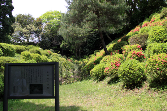 20090504_yamanaka_castle-13.jpg