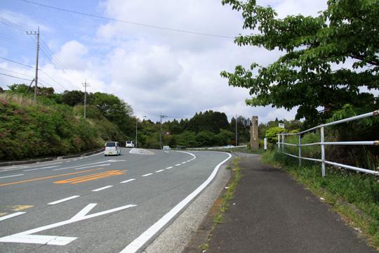 20090504_yamanaka_castle-45.jpg