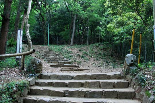20090505_hachioji_castle-23.jpg