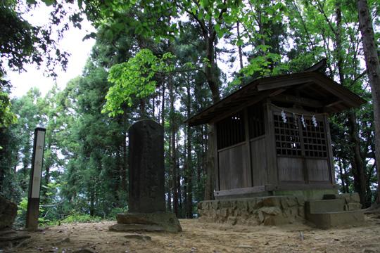 20090505_hachioji_castle-35.jpg