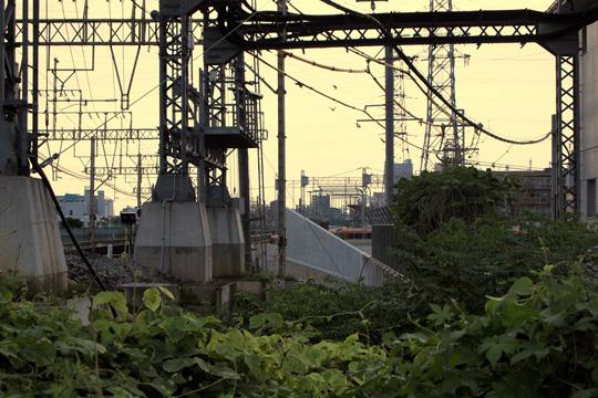 20090729_higashi_hanazono-01.jpg