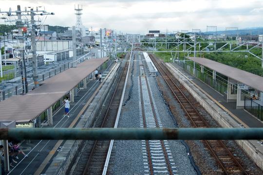20090802_hosono-01.jpg