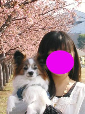 画像 20110227 006-1