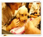 smileDSC_0016_20100914114703.jpg