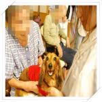 smileDSC_0043_20100714145913.jpg