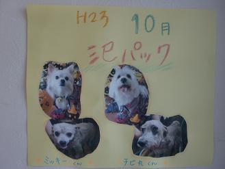 H23.10泥パックc
