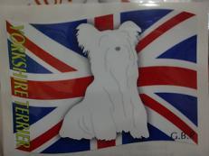 旗 ヨーキーc