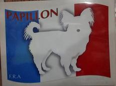 旗 パピヨン-c
