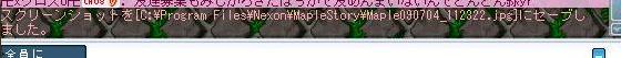 maple1228.jpg