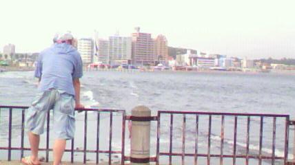 江ノ島から海岸を見つめる相棒。