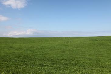 北海道2009 牧草地