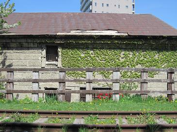 100523小樽1