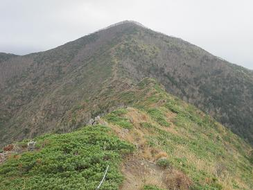 101023アポイ岳1