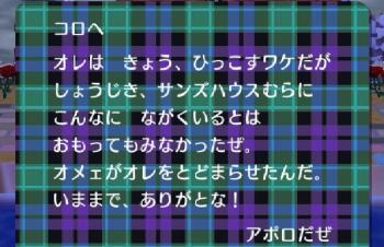 007_20090113125256.jpg
