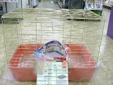 うさぎ飼育セット