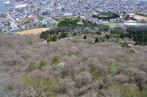 函館05-25-10-12