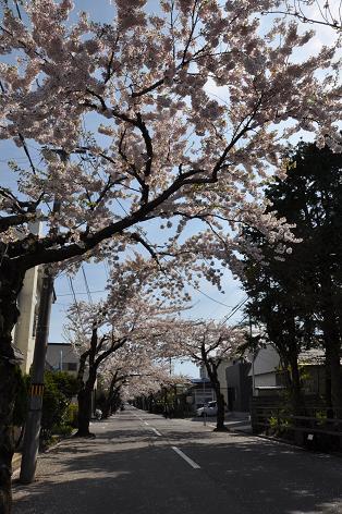 函館05-27-10-1