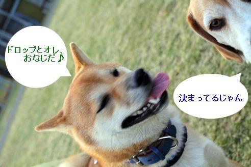 2011041007.jpg