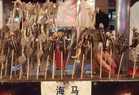 20100921 北京市内観光 195 竜の落とし子 16cm