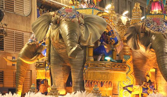 20 elephant DSC07406