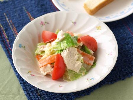 キャベツ鶏胸おかずサラダ01