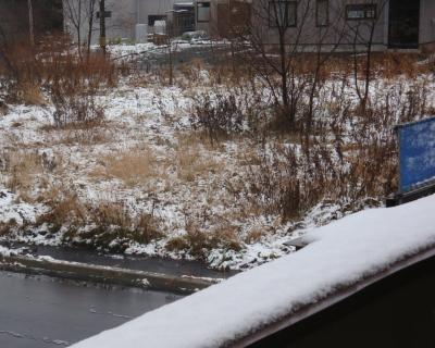 20091111-f2.jpg