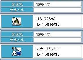 2009123101.jpg