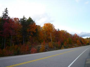 カナダの紅葉