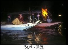 大洲 鵜飼い