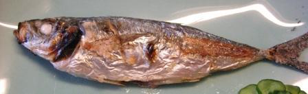 鰺塩焼き1