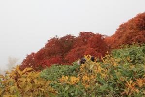 9月札幌 104