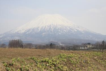 五月連休札幌2 016