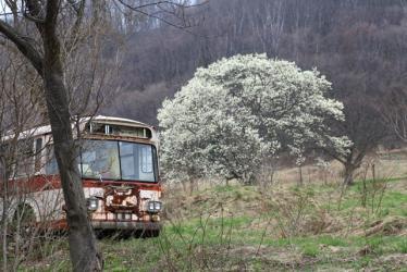 連休 匠の森 136