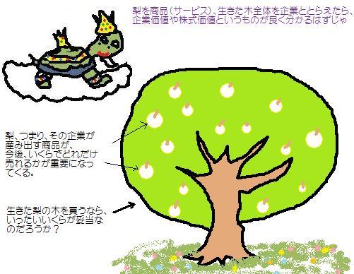 梨の木モデル