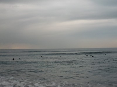 2010112106.jpg