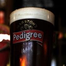 pedigree beer
