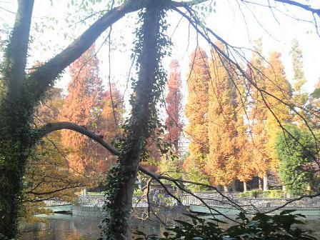 井の頭公園秋2010