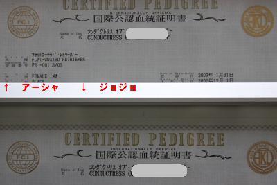 101125007.jpg