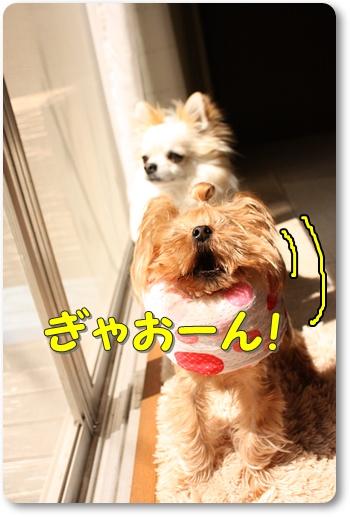 えるてぃ2