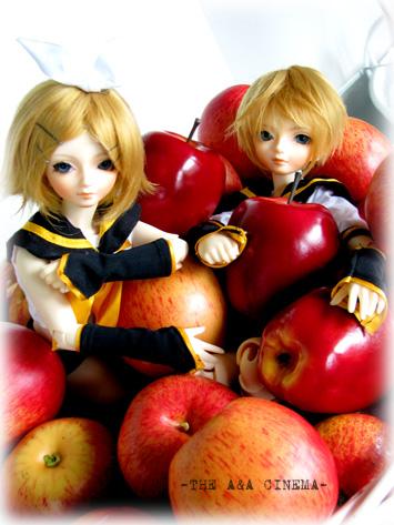 リンゴに埋もれて。