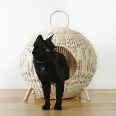 CAT20HOUSE-2.jpg
