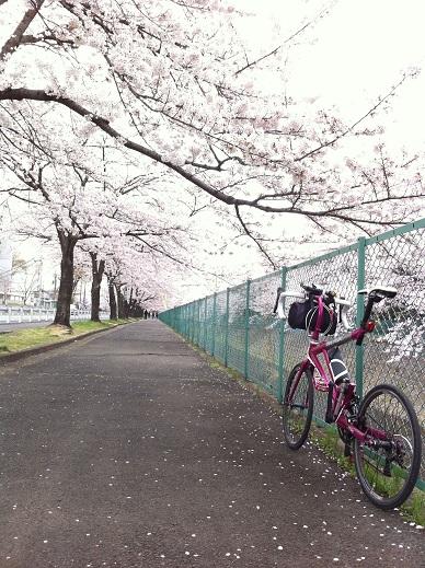 Photo 4月 11, 16 38 21