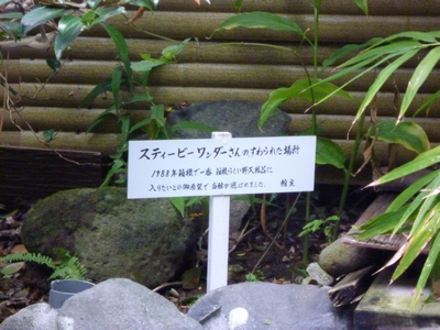 箱根日帰り旅行_07